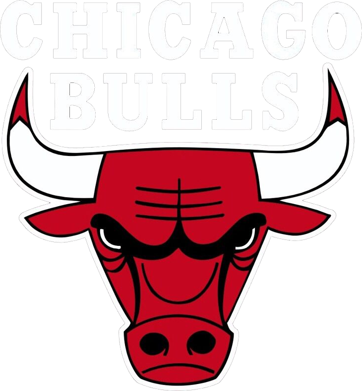 CJE Connects-Chicago Bulls
