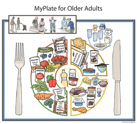 My Plate for Older Adults